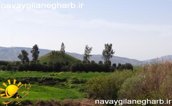 تصاویر بهاری دهستان حومه پایین شهر گیلانغرب